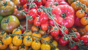 Tarleton tomatoes